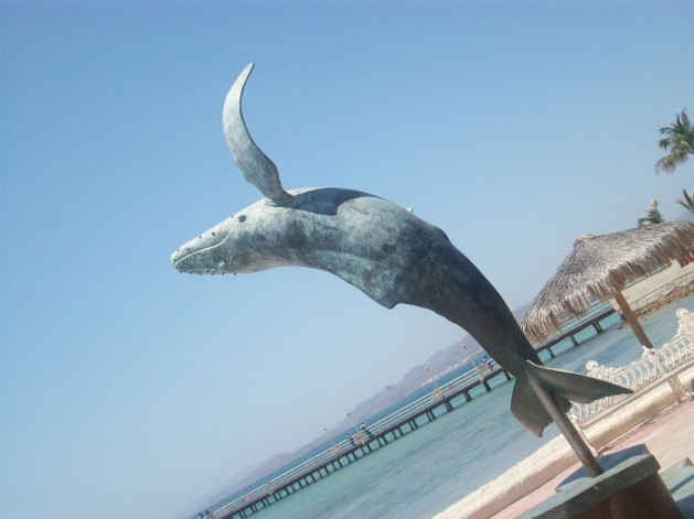 Wal-Skulptur_SNIPPING