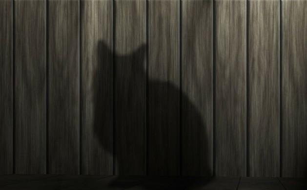 Geheimnisvoll-Schatten_SNIP