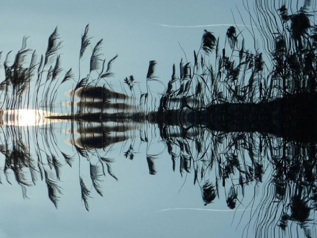Wasser-See-Spiegelung_SNIP
