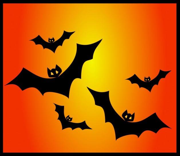 Halloween-1_SNIP-2_Rand