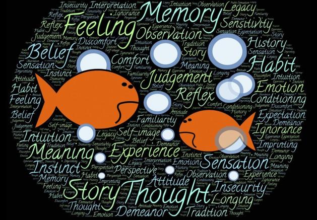 Erinnerung-Fische_SNIP_johnhain